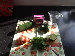 Kokosmælk, agurk,mynte,æble,lime,spinat og vand ☺️